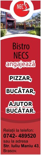 Bistro Nec's Angajeaza